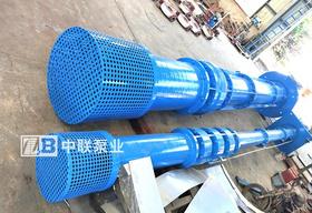 中电电厂购买立式长轴泵4台
