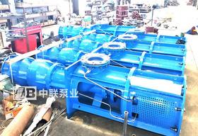四川某机电设备公司采购长轴泵用于电厂