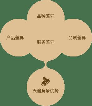 天途路业-竞争战略
