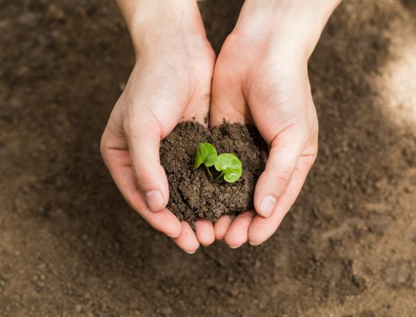 Persist in environmental optimization