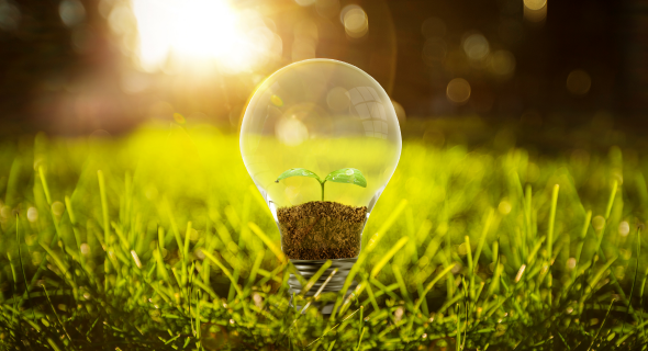 Green Procurement Guidelines