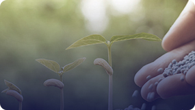 化肥行业解决方案