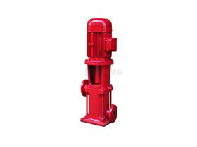 DLR型耐高温立式多级泵