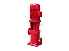 DLR系列立式热水管道多级离心泵