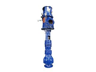 <b>LCM型矿用排污长轴泵</b>