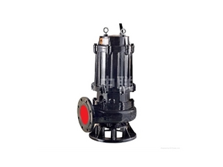 <b>QW型无堵塞潜水式排污泵</b>