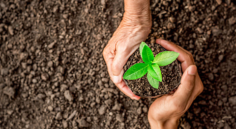 Инновации в области охраны окружающей среды