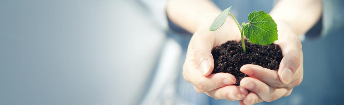 搭建绿色产业链