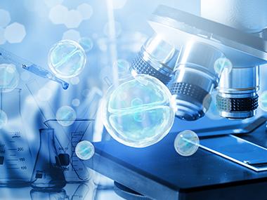 生物发酵萃取应用解决方案