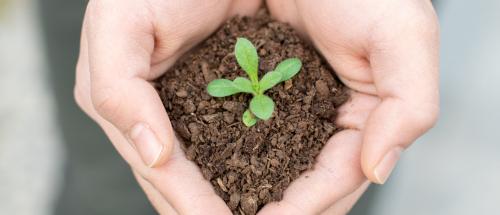 环保发展创新