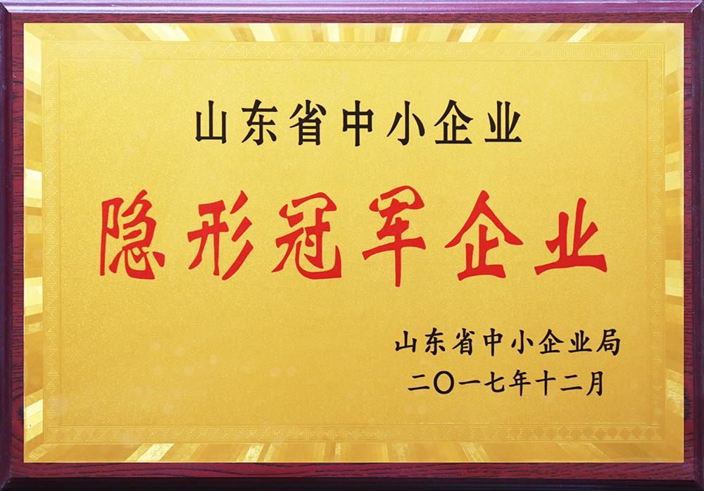 山东省中小型企业隐形冠军企业