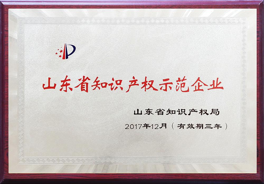山东省知识知识产权示范企业
