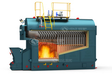 Biomass-fired boilers