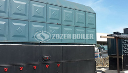ZOZEN SZL series water tube boilers support the capacity upgrade of edible oil industry giant in Pakistan
