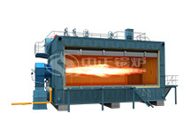 1 T GAS STEAM BOILER
