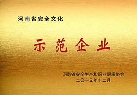 年省安全文化示范企业