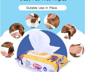 Provide organic grooming pet wet wipe for dog